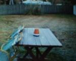 Rim på piknikbordet!